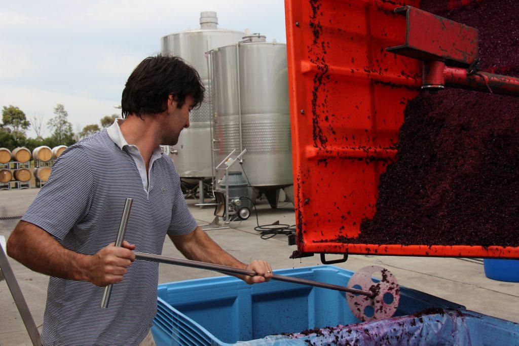 contract_winemaking_victoria